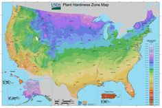 2012_USDA_Plant_Hardiness_Zone_Map_(USA).jpg (10800×7200)