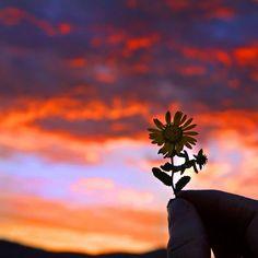 Life always appears as it is viewed......  Kerry Guy ♥