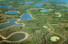 Lagoas da planície do Pantanal unem beleza e diversidade biológica.