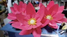 Large Lotus Flower Using Paper for Window Display DIY Project