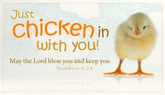 Just Chicken In with you.  Free ecard http://www.crosscards.com/cards/scripture-cards/chicken-in.html