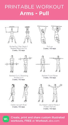 Arms - Pull: my visual workout created at Weights Workout For Women, Gym Workout Plan For Women, Gym Workouts Women, Barbell Workout For Women, Upper Body Workout For Women, Arm Workouts, Workout Exercises, Stretching Exercises, Workout Plans