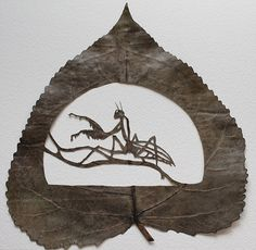 In this intricate work, Spain-based artist Lorenzo Durán transforms the already baffling wonder of nature into even more incredible works of hand-cut art. The self-taught artist first began carving when he saw a caterpillar eating a leaf and was inspired to use a similar dissection technique to reveal the hidden mysteries of nature.