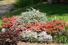 Arriates y borduras florales: En otoño