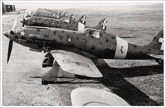Macchi MC.202, 84-2, 84° Squadriglia of the 10° Gruppo, Campoformido airport, near Udine (North-East Italy), 1942