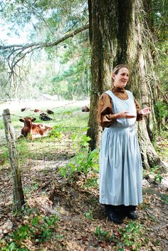 Visit Dudley Farm State Park and learn about life on a Florida cracker farm in the early 1900s #historic #statepark #livestock