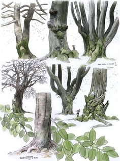 how to draw leaves on a tree deviant art - Google Search