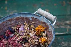 Simmer Pot Fragrances