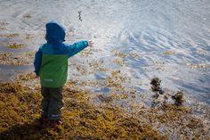 (Lähi)matkailua lasten kanssa. #norja #norway #blogi #lapset #matkailu #oktonautit