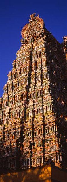 **Meenakshi Amman Temple,  Madurai, Tamil Nadu, India