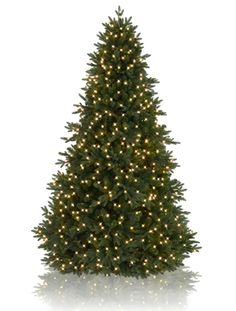 Saratoga Spruce, unlit, over 3000 tips, sale price 249, weighs 39 lbs, 7 ft tall