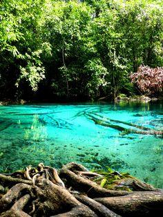 Phang Nga, Thailand #travel