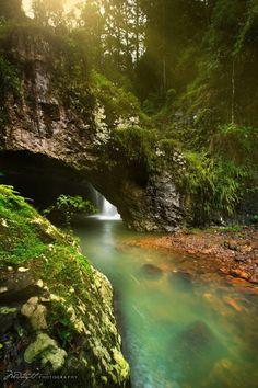 cuiledhwenofthegreenforest:  Natures Bridge by Chrystal...