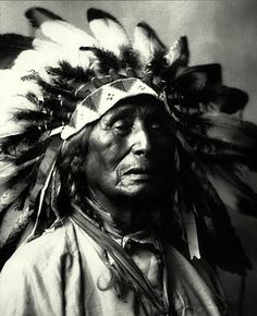 A Lakota Sioux Prayer...  Aho Mitakuye Oyasin….All my relations. I honour you in this circle of life with me today. I am grateful for this opportunity to acknowledge you in this prayer….  To the Creator, for the ultimate gift of life, I thank you.  To the mineral nation that has built and maintained my bones and all foundations of life experience, I thank you.  To the plant nation that sustains my organs and body and gives me healing herbs for sickness, I thank you.  To the animal...