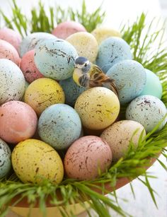 7 ingenious egg decorating ideas, easter decorations, seasonal holiday d cor Egg Crafts, Easter Crafts, Holiday Crafts, Easter Ideas, Easter Decor, Easter Projects, Holiday Decorations, Holiday Ideas, Diy Projects