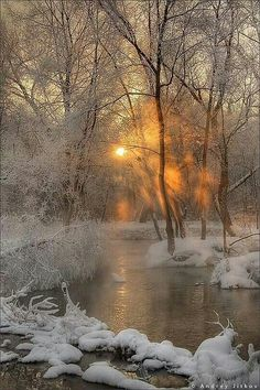 Russia, winter, cold, water, snow, trees, fuzzy or fluffy texture of the snow, white, brown, black, orangey-yellow, yellow, orange, ice, branches make a feathery or lacey texture when there's ice on them