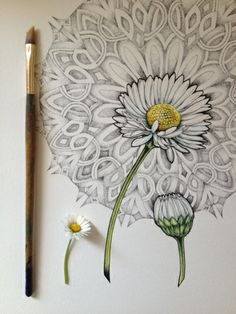 Art In Progress & Completion - blossom experiment