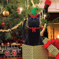 Gather round the Christmas tree for a sweet surprise! Meowdel: @sophie_the_model  Everything on HussyCats.com is on sale for the holidays!!!  For a chance to be Hussified, follow @HussyCats on Instagram & use #HussyCats to submit your photos!