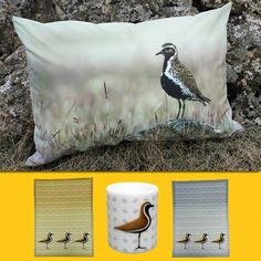 🌼The first golden plover of the season has arrived in South Iceland, which according to folklore, means that spring has come in Iceland! 🌻 The products are featuring the beautiful 'Lóa' or Golden Plover. Golden Plover, Hello Spring, Knitting Yarn, Wool Sweaters, Folklore, Spring Time, Iceland, Birds, Prints