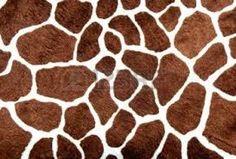 Afbeeldingsresultaat voor giraf huid