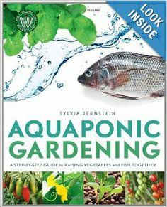 A combination of aquaculture and hydroponics, aquaponic gardening is an amazingly productive way to grow organic vegetables, greens, herbs, and fruits