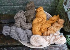 Wool - Tribulations of Hand Spinning and Herbal Dyeing: Several Effects of Iron Solution on Onion Dyed Wool and Cotton