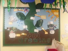 Plants Display, classroom display, class display, Plants, flowers, growth, growing, planting, bean stalk, Early Years (EYFS), KS1 & KS2 Primary Resources Class Displays, School Displays, Classroom Displays, Photo Displays, Interactive Activities, Educational Activities, Dinosaur Display, Plant Science, Ks2 Science