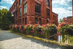 Natura i industrialne otoczenie? Para doskonała! - Inspirowani Naturą Flower Boxes, Flowers, Cities, Sidewalk, Stop It, Window Boxes, Planter Boxes, Side Walkway, Walkway