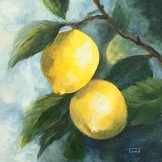 The Lemon Tree 6 x 6 Original Lemon Painting by Torrie Smiley Lemon Painting, Fruit Painting, Tree Canvas, Canvas Art, Lemon Pictures, Lemon Art, Watercolor Fruit, Still Life Art, Fruit Art