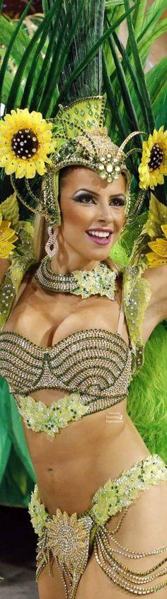 Carnival of Rio de Janeiro   Brazil