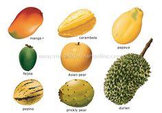 tropical fruits names ile ilgili görsel sonucu