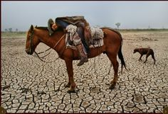 Steve McCurry Mongolia