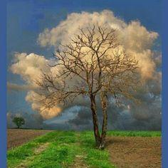 Magie des nuages