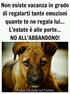 http://mondocrueltyfree.it/noi-diciamo-no/