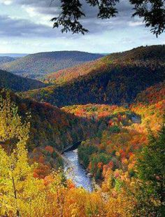 World's End State Park in Pennsylvania - - Fall beauty!