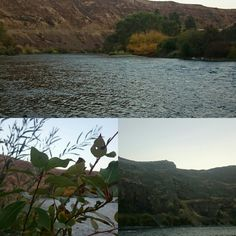 Yakima Canyon...  Spent Saturday here with Madison Hellickson and Jake Curnow.  Love this place!