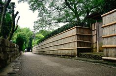 Path of Bamboo in Arashiyama / 竹林の小径(嵐山)