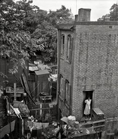 """Summer 1935. """"Washington, D.C., alley dwelling. The clutter of filth, debris and tin cans all have highly utilitarian purposes."""