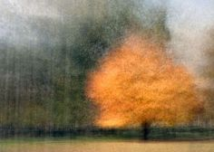 A salon for creative discussion about photo impressionism curated by stephen d'agostino Art Photography Portrait, Abstract Photography, Landscape Photography, Nature Photography, Abstract Nature, Abstract Photos, Multiple Exposure Photography, Encaustic Art, Arte Floral