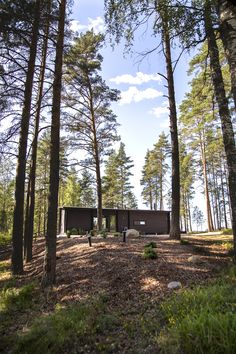 Salvos toteuttaa unelmiesi hirsirakennukset helposti ja luotettavasti! Löydä inspiraatiota jo toteuttamistamme hirsiunelmista ja kerää ideoita esimerkkimalleistamme. Tutustu ja ihastu!  #salvos #hirsimökki #hirsisauna #sauna #hirsiaitta #hirsi #hirsirakennus #mökillä #mökki #summerhouse  #finnish #loghouse #logcabin #logsauna #logbuilding Plants, Plant, Planets