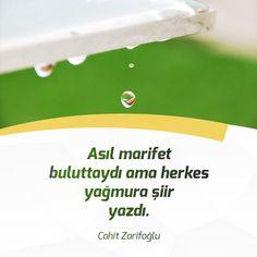 Asıl marifet buluttaydı ama herkes yağmura şiir yazdı. Cahit Zarifoğlu