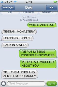 Man texts Dog