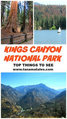 Here is a list of the best things to see at Kings Canyon National Park located in California's Sierra Nevada. Get prepared to be amazed!