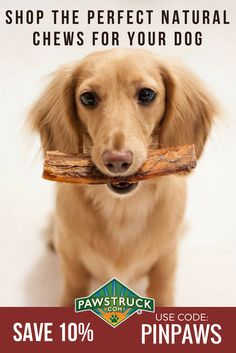 Our Mission is to Provide Dogs with Healthy Treats They Deserve. Shop Bully Sticks, Dog Bones, Antler Dog Chews & more from the leader in natural dog treats. Family owned & operated with your dog's health in mind. Treat your dog today!