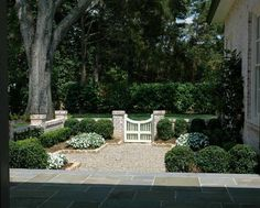 Home Exterior ~ Landscaping ~ Boxwoods