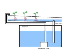 Hydroponics: How to Use the Nutrient Film Technique: Diagram of a Nutrient Film Technique System
