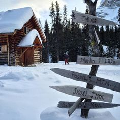 This way to Tokyo! Starting point: Skoki Lodge. #mountaincultureelevated #mybanff #justlakeit by meghanjward