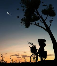42 New Ideas For Wallpaper Paisagem Lua Silhouette Photography, Moon Photography, Girly Pictures, Art Pictures, Silhouette Fotografie, Collage Foto, Photo Collages, Beautiful Nature Wallpaper, Moon Art