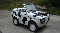 Fiat 500, My Dream Car, Dream Cars, Funny Looking Cars, Mini Cows, Microcar, Weird Cars, Crazy Cars, Cute Cars