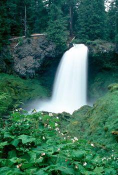 Sahalie Falls, Santiam Junction, OR   © Marsha K. Russell